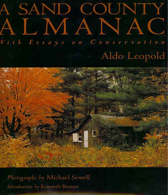 aldo leopolds land ethic essay The land ethic of aldo leopold describes a way in which to maintain a steady relationship between man and the environment a way in which there can be harmony.